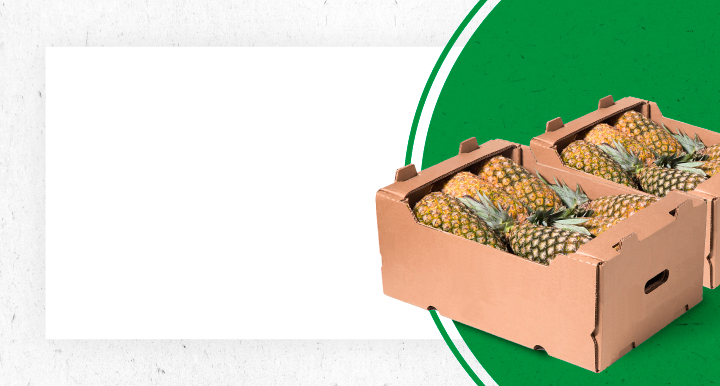 Caixa Hortifrúti
